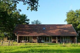 Modernes Ferienhaus in Geesteren mit Terrasse