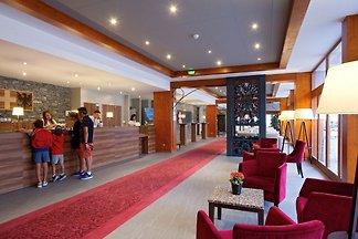 Luxusferienwohnung mit WLAN im großen Skigebi...