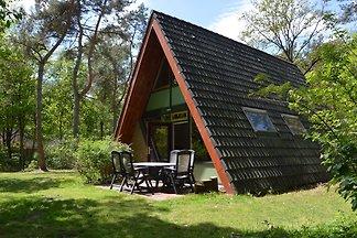Modernes Ferienhaus inmitten eines üppigen Wa...