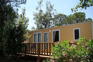 Wohnmobil mit überdachte Terrasse in der grün...