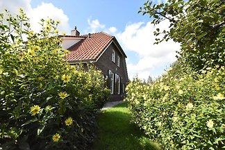 Gemütliches Ferienhaus in Hollandscheveld in...