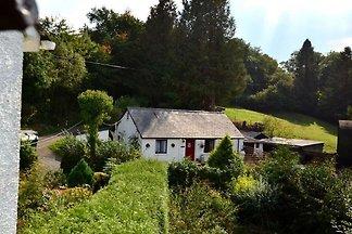 Gemütliches Ferienhaus in Talley mit Garten