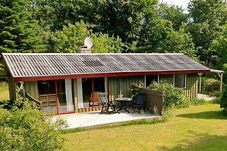Tolles Ferienhaus in Læsø mit Terrasse