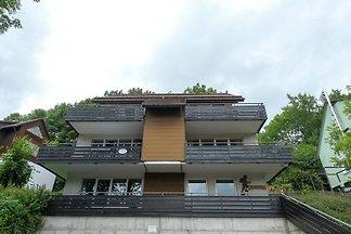 Elite Apartment in Sankt Andreasberg, nahe de...