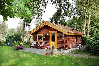 Schönes Ferienhaus in Gramsbergen mit Wald in...