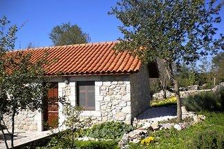 Gemütliches Ferienhaus in Leonidio mit Garten