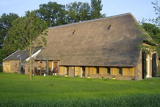 Ruhiger Bauernhof in Geesteren am Waldrand