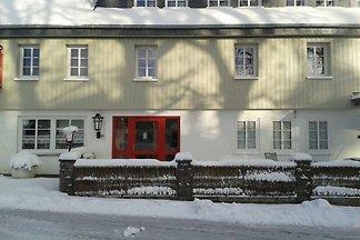 Komfortables Ferienhaus in Neuastenberg mit...
