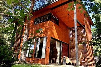 Modernes Ferienhaus in Dlugosiodlo mit Garten