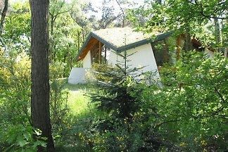 Ökologisches Ferienhaus inmitten der Natur mi...