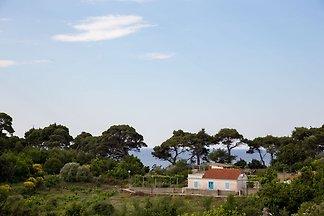 Gemütliche Villa in Kolocep mit Garten