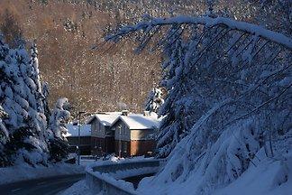 Modernes Ferienhaus bei Skigebiet in...