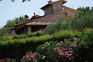 Villa di lusso a Vasciano Umbria con piscina...