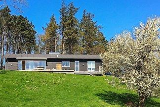 Schönes Ferienhaus in Seeland mit Terrasse