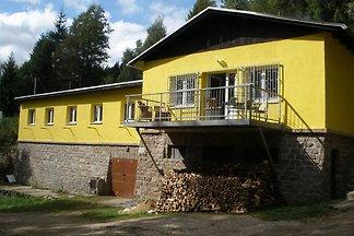 Elite Villa in Nedvedice mit privatem Pool