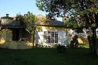 Schönes Ferienhaus in Ardea mit Garten