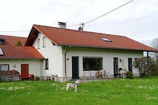 Gemütliches Appartement in Petersthal (Bayern...