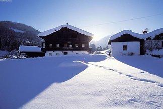 Moderne Ferienwohnung in Oberau Tirol, Nordic...
