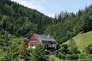 Wunderschönes Haus in Oppenau (Deutschland)