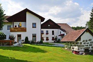 Ferienwohnung Hauermühle, Zenting