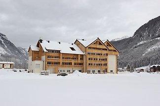 Große Ferienwohnung in Skigebietsnähe in Gosa...
