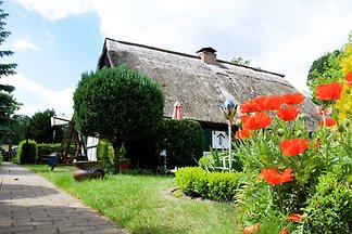 Gemütliches Ferienhaus in Gegensee bei Stetti...