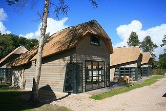 Luxuriöses und angepasstes Ferienhaus im Düne...