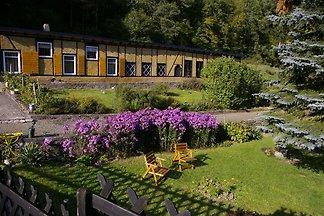 Idyllisches Studio in Waldnähe