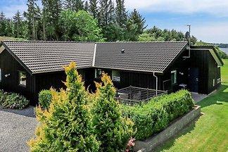 4 Sterne Ferienhaus in Skals