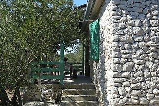 Ferienhaus Olivia, Tkon/Insel Pasman