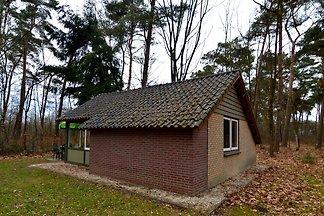 Schönes Ferienhaus in Limburg inmitten eines ...