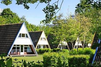 Ferienresort Ostsee Resort Damp, Damp