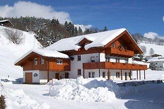 Geräumige Ferienwohnung unweit des Skigebiete...