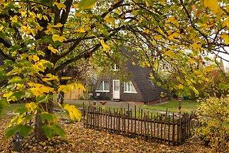 Gemütliches Ferienhaus in Bestwig mit eigenem...