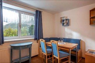 Ideale Wohnung in Hopfgarten im Brixental in ...