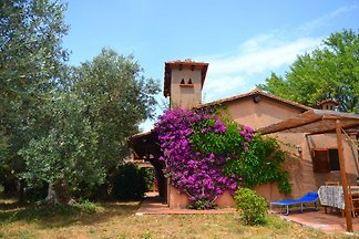 Comfy Holiday Home in Monte Argentario with...