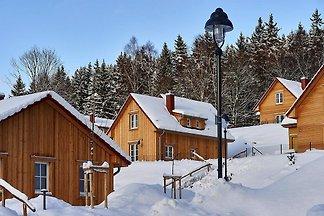 Ferienhäuser im Schierke Harzresort, Schierke