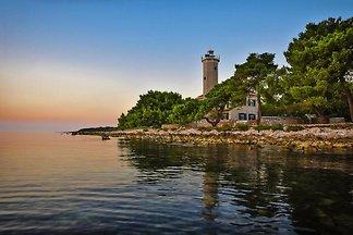 Willa Leuchtturm, Vir