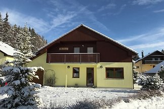 Geräumige Villa nahe Skigebiet in Lipno nad...