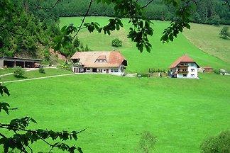 Schwarzwälder Bauernhof in absolut ruhiger un...