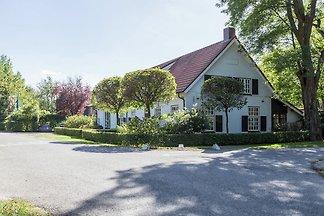 Behagliches Landhaus in Waldnähe in Bergeijk