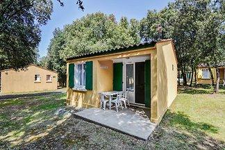 Gemütliches Ferienhaus in Saint-Savinien mit...