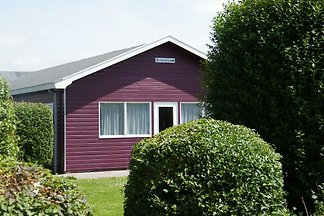 Group accommodation at 1km from the North Sea