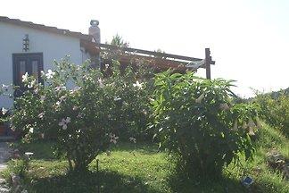 Charmantes Ferienhaus mit eigenem Garten in K...