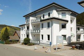 Modernes Apartment in Willingen mit Tiefgarag...