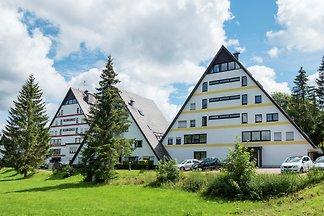 Reizende Wohnung in Schönwald im Schwarzwald