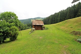Charmantes Ferienhaus mit Garten beim Skigebi...