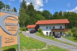 Ruhig gelegene Wohnung in Daxstein im Bayeris...