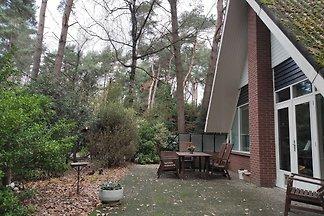 Modernes Ferienhaus in Meijel mit Garten
