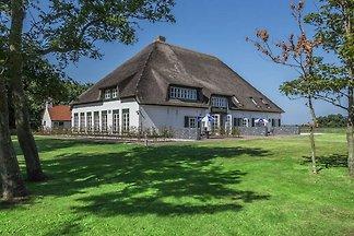 Moderner Bauernhof in De Cocksdorp mit...